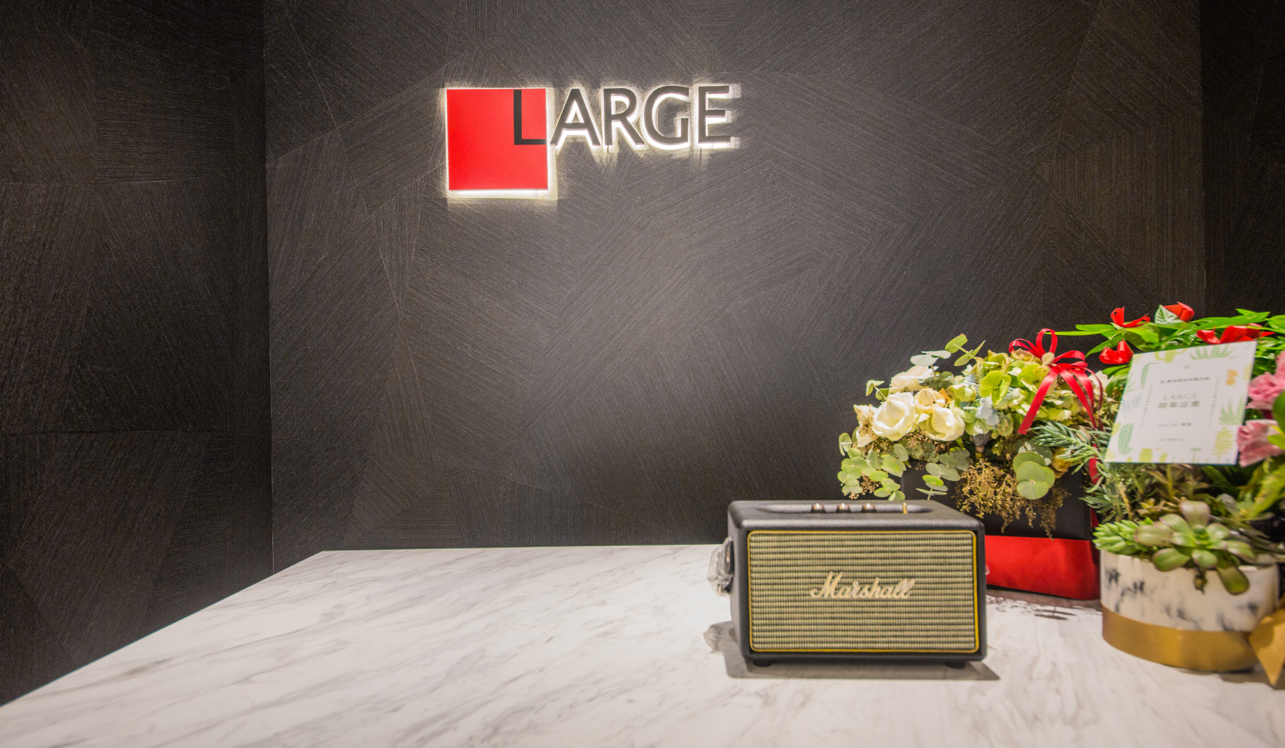Large-04
